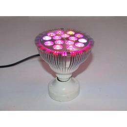 河南农用植物生长灯,农用植物生长灯,同凯电子(查看)