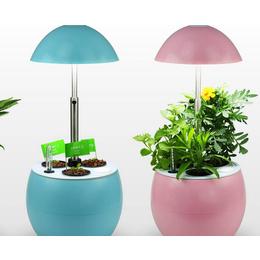 同凯电子(图)、宁夏农用植物生长灯有用吗、宁夏农用植物生长灯