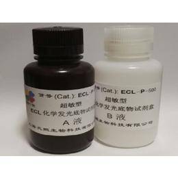 超敏型 ECL化学发光底物试剂盒 高飞克级灵敏度 信号持久