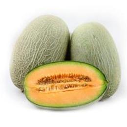 新鲜 哈密瓜