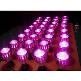 同凯电子(图),什么是激光育苗灯,激光育苗灯