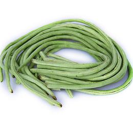 生态农产品 有机蔬菜食物  豆角