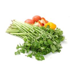 生态农产品 有机蔬菜食物  芹菜