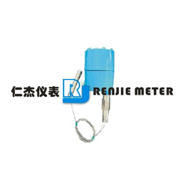 仁杰仪表CL-2M系列射频导纳物位变送器