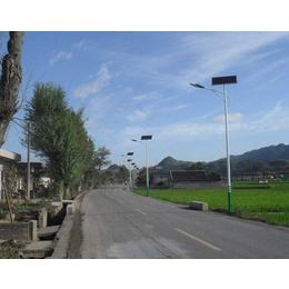 农村扶贫太阳能路灯亮化项目