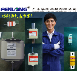 FENLONG品牌RS72A快速熔断器