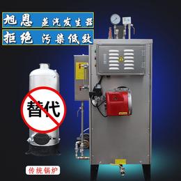 旭恩50kg燃气蒸汽锅炉小型商用立式液化气全自动蒸气发生器