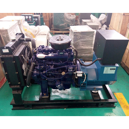 厂家直销潍柴耐用铸铁30千瓦柴油发电机