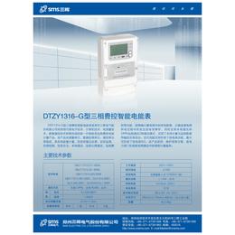 DTZY1316-G-国网新标准的三相GPRS网络表三晖电气