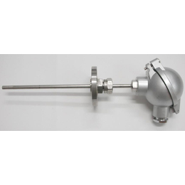 WZPK-195铠装热电阻