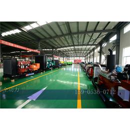 国产型玉柴30kw天然气发电机组质量怎么样