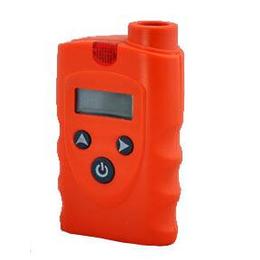 供应邦泰厂家直销RBBJ-T油漆气体分析仪器