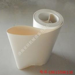 供应江西九江进口聚氨酯输送带 耐磨输送带 防滑裙边输送价格