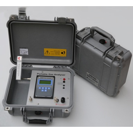 发电厂便携式气体分析仪_北京东分科技_便携式气体分析仪