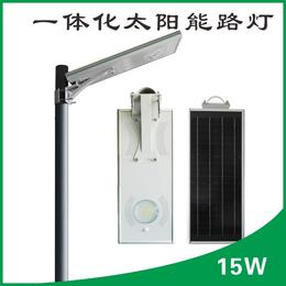 热款15W一体化感应庭院灯亮化工程户外照明LED智能灯具