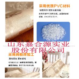 嘉合源JHY-491厂家生产环保购物袋 礼品袋 档案袋流延膜