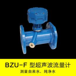 厂家直销BZU-L管道式超声波流量计DN125原装现货