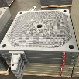 高压隔膜板框滤板 增强聚丙烯滤板 各种规格材质滤板 质量保证