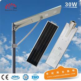 家用照明太阳能灯若日牌太阳能路灯杆6米智能太阳能一体灯