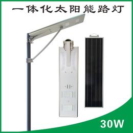 若日发电30W一体太阳能led路灯庭院灯感应农村太阳能路灯