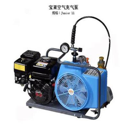 职安健德国宝雅便携式压缩空气填充泵