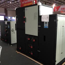 金属表面处理生物质蒸汽锅炉 德力亚300kg生物质蒸汽发生器