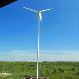 晟成3000W低转速水平轴同步风力发电机携带方便