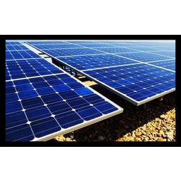 振鑫焱上门回收光伏板(在线咨询)|光伏板|光伏板价格