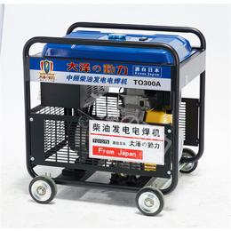 300A双缸发电电焊机品牌