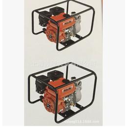 意大利Oleo-Mac欧玛水泵4T28AE 水泵4T65AE