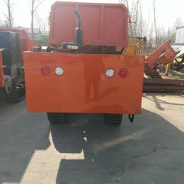 山东冠林机械(在线咨询)-履带运输车-小型履带运输车报价