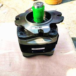 山东济南福伊特齿轮泵IPV7-125原装现货
