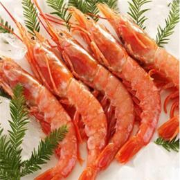 酒店餐饮刺身料理用红对虾