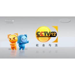 在中央电视台CCTV-12社会与法频道投放广告的费用是多少