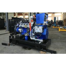 内江养殖场15kw千瓦热电联产燃气发电机组 污水处理专用