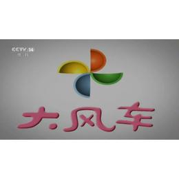 在中央电视台CCTV-14少儿频道投放广告怎么收费