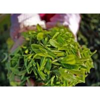 怎么区分一红四绿茶叶