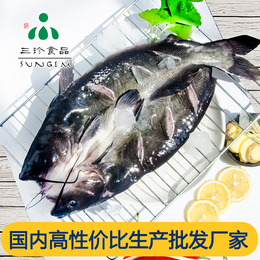 供应安徽巢三珍开背鮰鱼 厂家直销批发