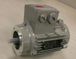 西门子电机出色的品质1FK7083-5AF71-1AH2
