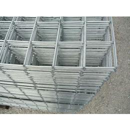 现货供应镀锌钢丝网-****低碳钢丝-坚固耐腐蚀-畅销品