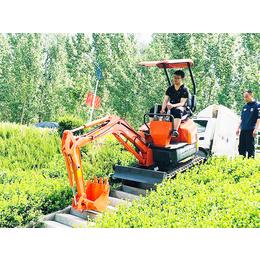 最小型挖机 挖山药用小型挖机厂家直销