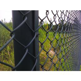 勾花护栏网 组装体育场护栏网  运动场护栏网