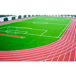 专业塑胶跑道厂家_博森建材(在线咨询)_塑胶跑道
