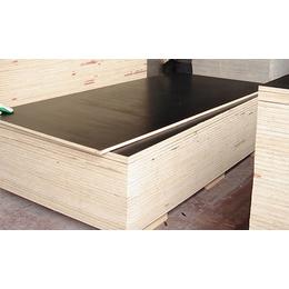 日照国鲁木业(图)|建筑覆模板批发|建筑覆模板
