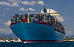 福建泉州到天津海运一个柜子要多少钱多久能到