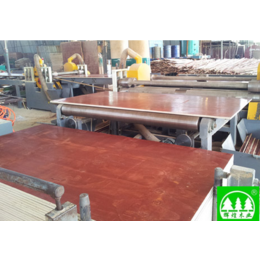 广西建筑模板 广西工程夹板 广西胶合板平安国际充值