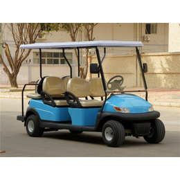 6座电动高尔夫球车、贵阳东怡、毕节电动高尔夫球车