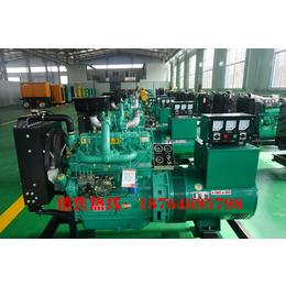 养殖专用性价比高采用里卡多技术生产潍坊40千瓦发电机组