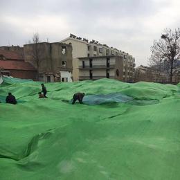 盖土网 施工现场裸土覆盖防尘网 环保抑尘绿化网 质量可靠