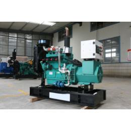 广西30kw千瓦生物质气发电机价格 小型秸秆气发电机组